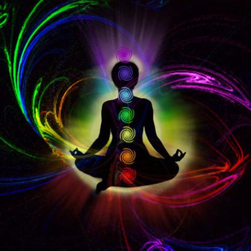 The Chakras & Yoga Training