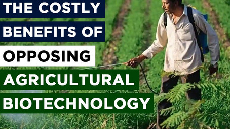 The Costly Benefits of Opposing Agricultural Biotechnology