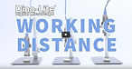 Youtube Dino Lite Longue distance