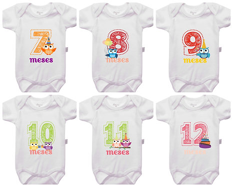 Mêsversário - Corujas - Kit 7 a 12 meses
