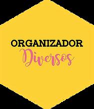 b-organizador-diversos.png