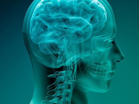 Identificado alvo potencial para imunoterapia dos gliomas