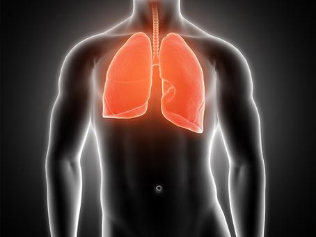 Neutrófilos associados ao tumor podem ser um novo alvo no câncer de pulmão