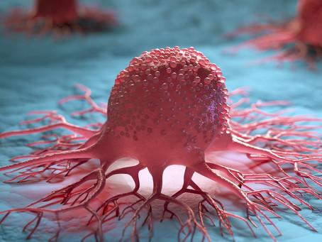 Identificado importante mecanismo de imunidade antitumoral inata