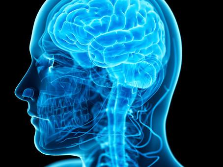 Colina reverte a disfunção lipídica induzida pelo gene APOE4 na doença de Alzheimer