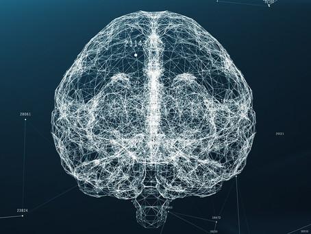 Identificada via relacionada ao envelhecimento cerebral passível de modulação