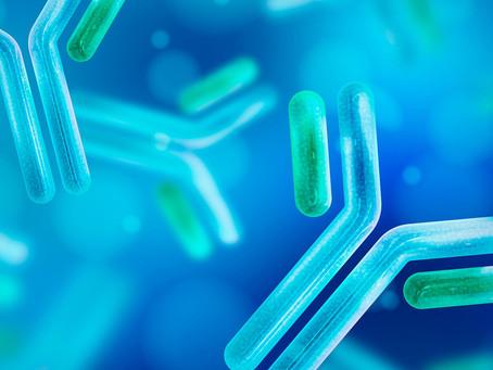 Novos anticorpos chegam para aprimorar resultados da imunoterapia do câncer