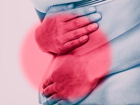 Estudo desvenda resposta imune reparadora após inflamação intestinal