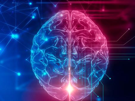 Mitocôndrias podem ser a chave de uma terapia eficaz no autismo