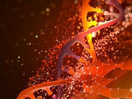 Expressão gênica da placenta é importante na predição de risco de esquizofrenia