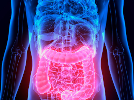 Estudo identifica alvo terapêutico para doença de Crohn no microbioma