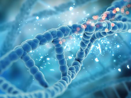 Ataque a mecanismo hospedeiro de reparo de DNA pode ajudar contra a hepatite B