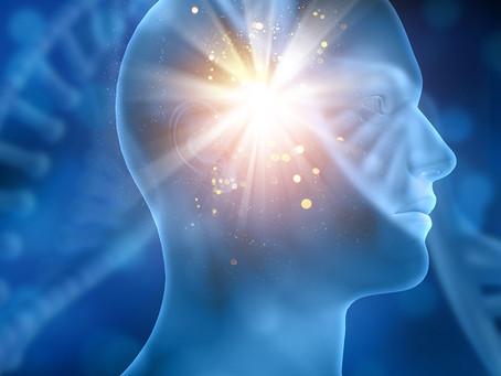 Nova abordagem encontra pontos críticos no DNA para identidade e função neuronal