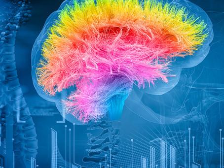 Estudo descobre que autismo e TDAH compartilham carga genética