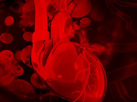 Identificado potencial alvo terapêutico na aterosclerose