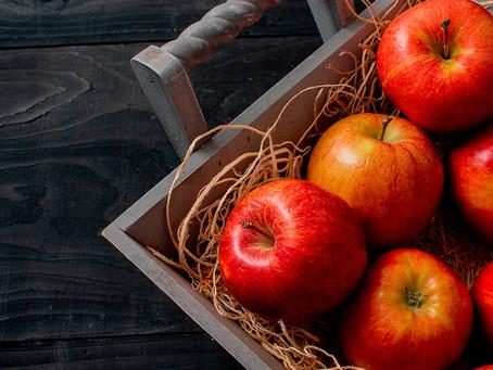 Estudo encontra componentes na maçã que estimulam a neurogênese