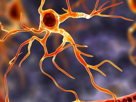 Identificado primeiro composto capaz de recuperar neurônios na ELA