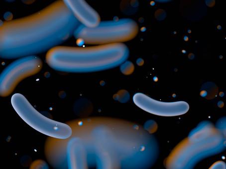 O amplo potencial antibiótico do canabidiol