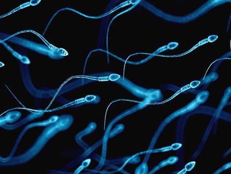 Mosaicismo no esperma paterno pode estratificar risco de autismo