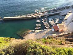 Arrifana Port