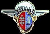 Insigne_régimentaire_du_1er_régiment_de_