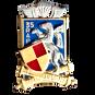 35-rap-insigne-metallique-du-35-regiment