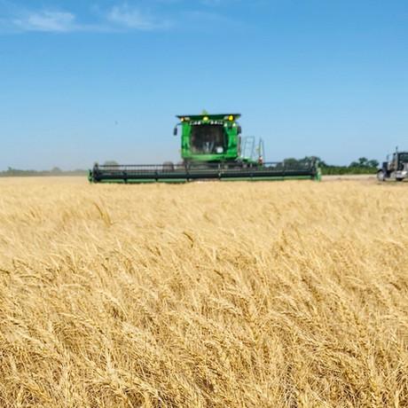 Harvest 2020 - LCS Atomic AX