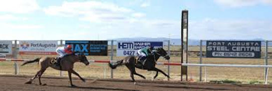 Handsome return winning port augusta cup