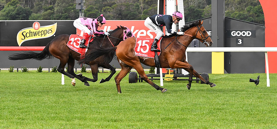 open minded winning at Sandown.JPG