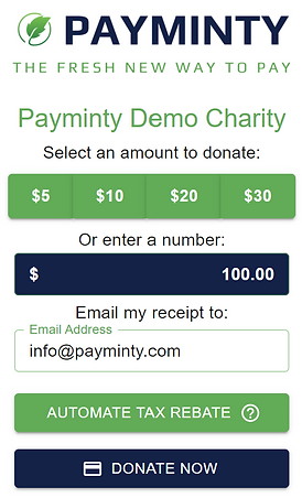 Payminty Demo Screen Shot.png