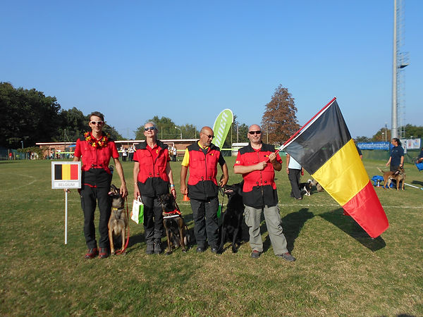 L'équipe de chiens de sauvetages belges au championnat du monde IRO 2016 (IT) menée par Bruno Barras