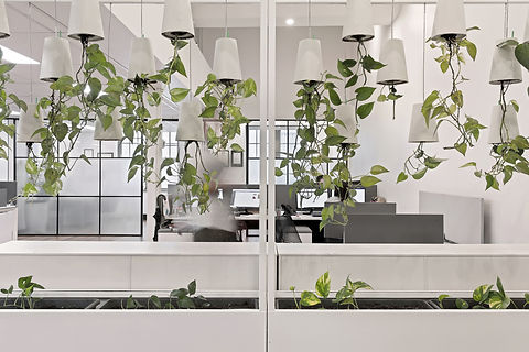 Generate_Surry_Hills_Office_High_Office_