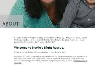 Netties Night Rescue website snip.JPG