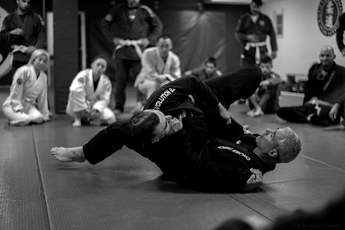 Daniel guillemette - evolution BJJ