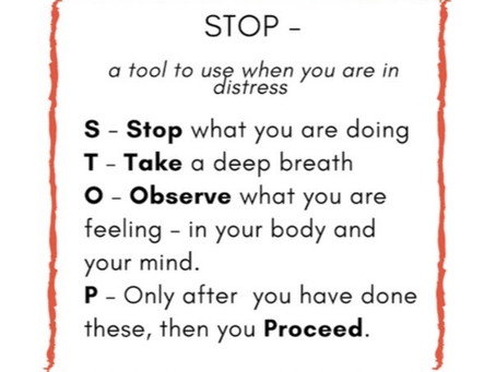 Stop - Don't Swallow It Whole!
