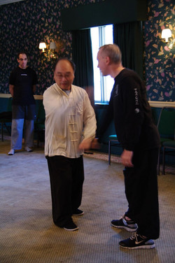 212 Master Ting Demonstrating Rotate the