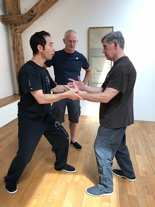 Tai Chi Applications 9:30 - 10:30 am