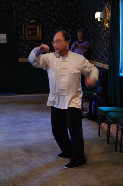 208 Master Ting explaining how the hips