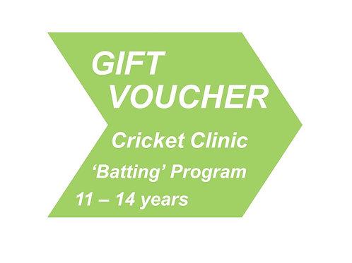 Cricket Clinic 'Batting' 11 - 14 years