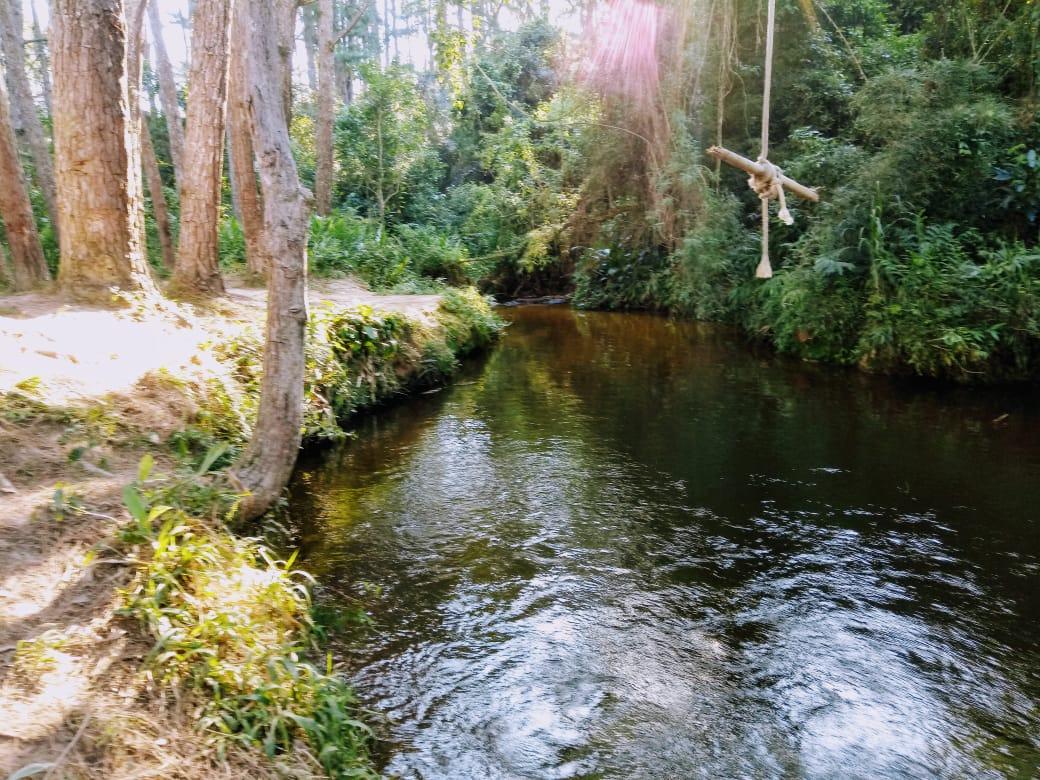 lago_dos_pinheiros_a