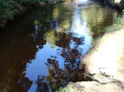 lago_dos_pinheiros