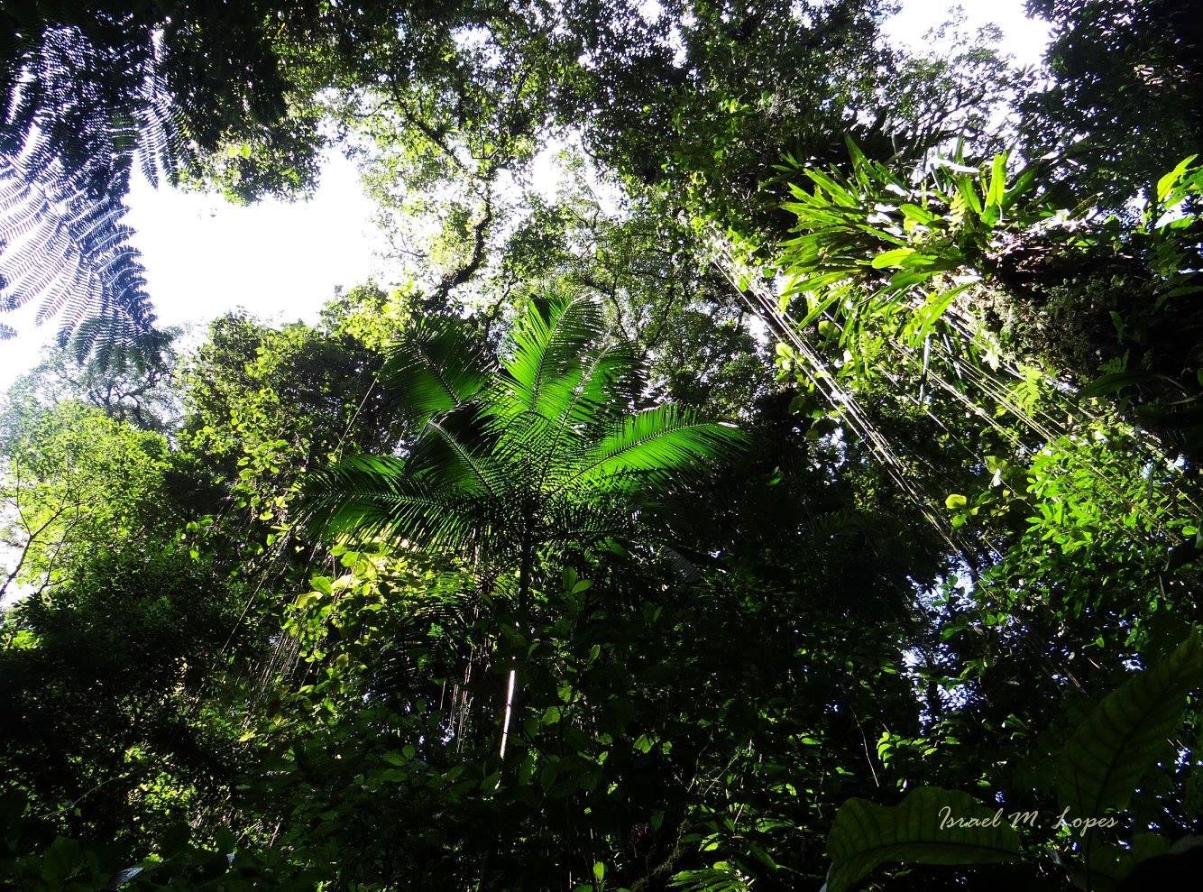 quilomboc