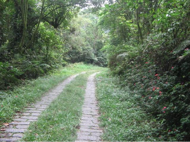 caminho bela  vista_jpg