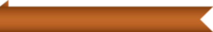 orangeBannerFlip.png