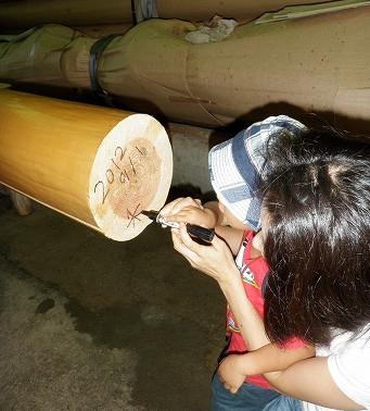 <第26稿>9月展示会(大阪・宮城・福岡)/大黒柱選木ツアー