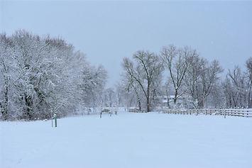 Winter%20bridge%20facing%20east%202_edit