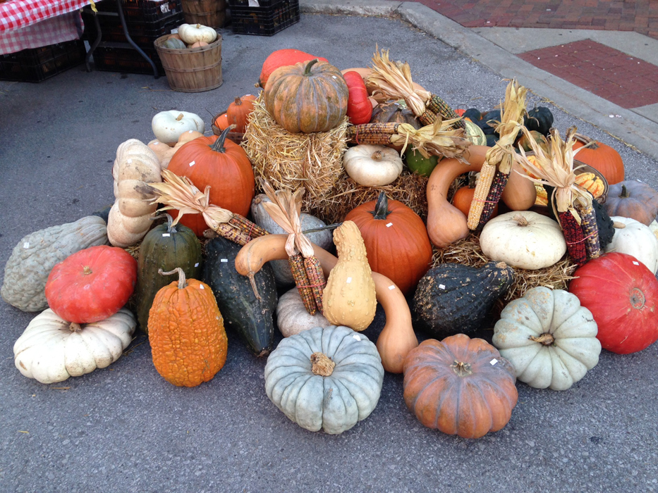 Fall Display at Market.JPG