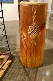 Captured - encaustic drawing on cedar log