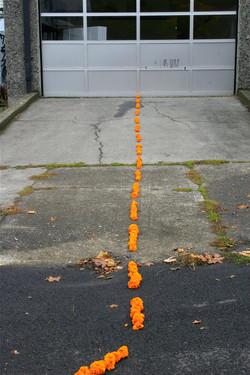 """Marigold Road"", alternate view"