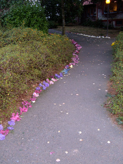 """""""Spring in November"""", alternate view"""
